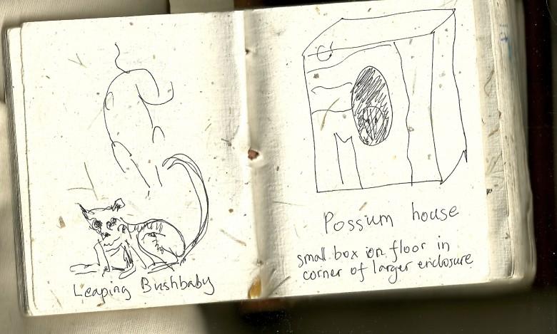 Possum house