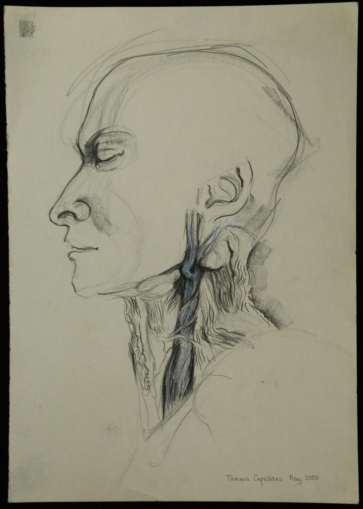 blue vein neck